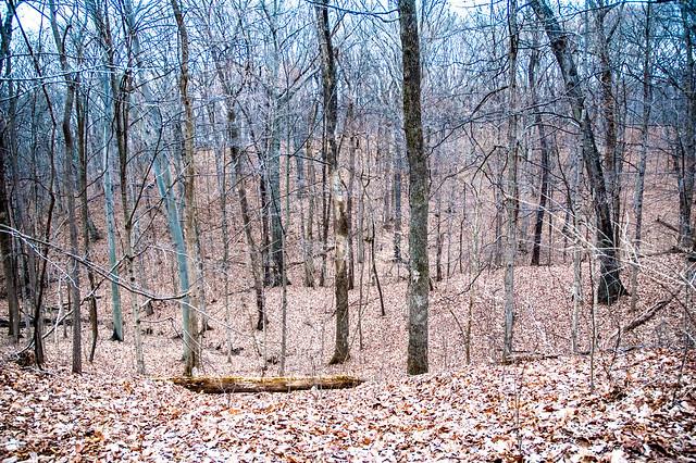 Harmonie State Park - January 6, 2015