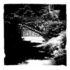 Garden Gate (Demmer S) Tags: shadow blackandwhite bw monochrome sunshine garden square outside outdoors blackwhite gate shadows gardening decorative sunny squareformat blackwhitephoto blackwhitephotos
