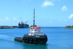 Nalani (Pink Hibiscus) Tags: hawaii harbor nikon 7600 pointandshoot tugboat honolulu tug allrightsreserved copyrighted barberspoint 2015 sank nalani honoluluharbor 12215 pinkhibiscus nalani12215 nalanisank12215