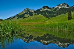crystal lake ({benhartmann) Tags: mountain lake reflection nature landscape switzerland outdoor samsung nx grppelensee