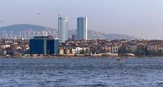 Istanbul 254 (Alexxx1979) Tags: city november autumn sea turkey istanbul осень город море seaofmarmara турция ноябрь 2013 стамбул мраморноеморе
