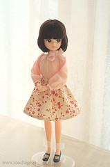 1/6 Doll dress