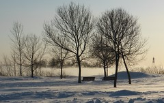 Lac St-Louis (anng48) Tags: winter canada hiver lachine qc lacstlouis qnebec