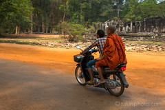 A Buddhist Monk on a Scooter, Angkor Wat, Siem Reap, Cambodia