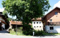 Hike from Maibrunn to Elisbathszell (onno de wit) Tags: germany bayern deutschland danube duitsland donau ticks bayerischerwald teken beieren stenglmar sanktenglmar elisabethszell beiersewoud maibrunn bavarianwoods