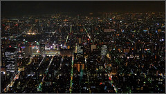 TOKYO: Largest City in the World (rolo_061) Tags: tokyo japan outside night lights streets city citycentre skytree tokyoskytree horizon endless nightphotography dark sumida nightlife fly rohite nepali