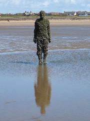 DSCF0718 (SierPinskiA) Tags: sea shells beach liverpool sand ironman pools barnacles ironwork mayday seashore merseyside anthonygormley irishsea 2016 anotherplace crosbybeach blundellsands fujixs1