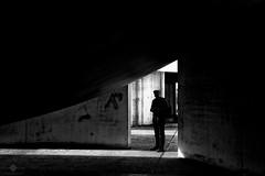 The Stalker (chmeermann | offline for a while...) Tags: bw monochrome photoshop germany de blackwhite nikon sw nikkor lowkey nordrheinwestfalen neuss lightroom 18135 schwarzweis querformat landscapeformat d7100 silverefexpro2