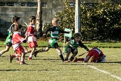 20160709_0847_7D2-200 Try for Ethan (johnstewartnz) Tags: canon eos rugby ethan 70200 70200mm yabbadabbadoo 7d2 ripparugby 7dmarkii canonapsc hornbrrfc edgarmacintoshpark maristalbion