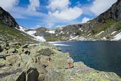 IMG_1964 Haukelifjell, Nupsdalen (JarleB) Tags: haukelifjell haukeli nupsdalen norway nupsredet nup hordaland odda rldalstrimmen hyfjellet norwegen norge westernnorway rldal hardangervidda haukeliseter ulevvatnet