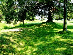 Southwold Earthworks, Southwold, ON (Snuffy) Tags: southwoldearthworks southwold ontario canada ionastation nationalhistoricsiteofcanada level1photographyforrecreation attiwonderonk top150unusualthingstoseeinontario