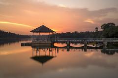 Sunset @ Lower Peirce Reservoir, Singapore (gintks) Tags: seascape reflection singapore singapur exploresingapore singaporetourismboard yoursingapore sg51 gintks gintaygintks sg2016 peircereservoirpavillion