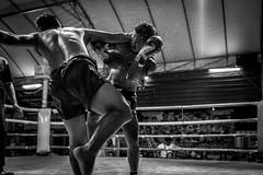 Muay Thai Boxing (mcalma68) Tags: blackwhite boxing fight sports monochrome action muay thai chiang mai thailand