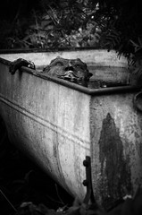 There is a man in the tub.... (Hildingsson) Tags: bw skulptur smland badkar svartvitt kafetimjan