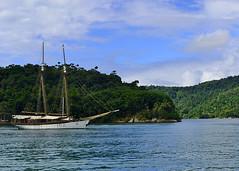 PARATY, BRAZIL - bay/ ,  -  (Miami Love 1) Tags: brazil brasil riodejaneiro bay yacht parati bahia brazilian brasileiro brasileno baia yate   pataty