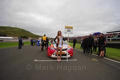 Mike Epps on the grid during the BTCC Knockhill Weekend 2016 (MarkHaggan) Tags: knockhill scotland motorracing 2016 motorsport cars racing btcc btcc2016 14aug16 14aug2016 britishtouringcarchampionship britishtouringcarchampionship2016 grid gridgirls gridgirl mikeepps michaelepps epps toyotaavensis avensis toyota rcibinsuranceracing teamhard