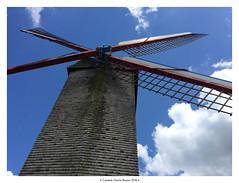 Molinos (carmen.gb) Tags: brujas brugge bruges brugse brgger belgium belgique flemish flandes flandria