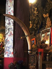 Huge Elephant Husk in Sakya Monastery (joeng) Tags: tibet china sakya temple building sakyamonastery landscape buddha monastery places animal