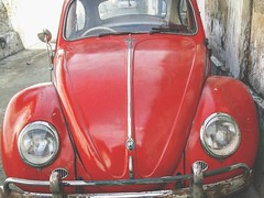 Volkswagen Beatle (Yudha Hanottama) Tags: auto old car vw vintage volkswagen cool nice mobil automotive beatle