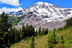 Mount Rainier (jimculp@live.com / ProRallyPix) Tags: rainier park paradise mountain