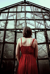 End of the world (Arianna Ceccarelli Photography) Tags: dark mood red apocalyptic greenhouse dress girl woman people conceptual picture fineart light fear cinematic nikon