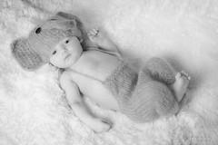 Vincent (MichellePhotos2) Tags: newborn portrait nikon d800 nikond800 baby bw blackandwhite vincent vinnie