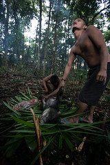 Guilherme.Gnipper-0340 (guilherme gnipper) Tags: picodaneblina yaripo yanomami expedio expedition cume montanha mountain wild rainforest amazonas amazonia amazon brazil indigenous indigena people