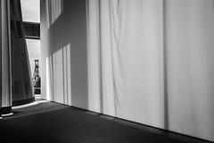 view on history (Blende1.8) Tags: unescoworldheritage routeindustriekultur industriekultur industrialculture architecture architektur frderturm zechezollverein sanaa interior indoor essen nrw deutschland germany shafttower kultur innenraum ausblick nikon d700 nikkor 1635mm mono monochrome monochrom sw schwarzweis black white gardine wind schatten shadow