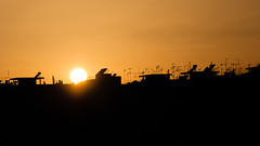 Piraeus (katoine42) Tags: greece grce pire piraeus ombre silouhette soleil antenne btiments