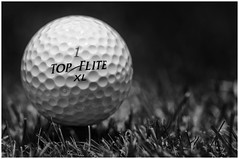 Macro Mondays - Summer Olympic Sports - Golf (Explore 15 Aug 2016) (andymoore732) Tags: macromondays summerolympicsports macro mondays summer olympic sports golf top flite ball monochrome nikon d300 afs vr micronikkor 105mm f28g ifed challenge theme flickr macromonday blackandwhite depthoffield depth field xl macromondays