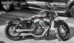 Aug 8 2016 - Harley 48 at Vance & Hines vendors at Black Hills Harley Davidson (lazy_photog) Tags: lazy photog elliott photography sturgis south dakota black hills motorcycle classic rally races bikers babes party beer rides 080816sturgisdaythree
