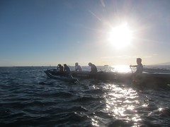 IMG_6817 (nautical2k) Tags: waikikibeachboys paddling outrigger canoe diamondhead honolulu oahu