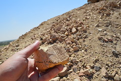 Stamped mud-brick from Borsippa (Sumer and Akkad!) Tags: borsippa babel babylon iraq mesopotamia cuneiform inscription mudbrick ziggurat nabu temple tower tonguetower