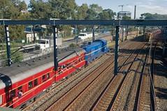"""The Great Train Race"". 4001, on 6L81 heads towards Strathfield. 11th June, 2016. (garratt3) Tags: 4001 40class aus australia diesel dieselloco dieselpassenger dieselpower dieseltrain heritage rail nsw nswheritage nswrtm raifan railroad standardgauge thnsw newsouthwales newsouthwalesheritage newsouthwalesrailtransportmuseum"