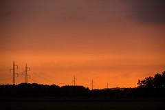 Master (Kent 40D) Tags: solnedgang have træer sol aften hjemme skuderløse silhouet skygger