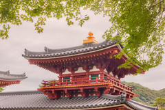 Roof line (Tim Ravenscroft) Tags: byodoin roof detail foliage uji japan