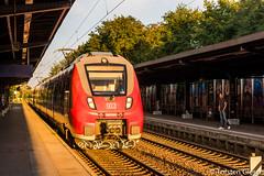 Potsdam-Charlottenhof_DB-Regio442-629+442-627_19092016 (giesen.torsten) Tags: nikon nikond810 potsdam potsdamcharlottenhof talent2 bombardier