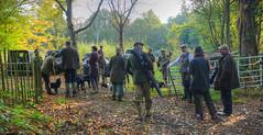 IMG_1846_Default (saundersfay) Tags: pheasant shoot gundogs autumn leaves countryside redleaf 2016 shotgun