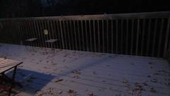 October Snow (DianesDigitals) Tags: dianesdigitals weather videos snow
