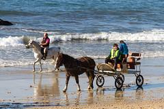 Caballos en Samil (dfvergara) Tags: espaa caballos mar agua playa arena galicia ria vigo rocas reflejos calesa samil riadevigo jinetes playadesamil