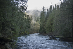river_2.jpg (Nullality.Nu) Tags: trees wild cold west nature water fog 35mm river flow prime coast is washington moss rocks aqua soft mt baker northwest bokeh decay smoke south twin fork running falls best rapids sharp vegetation fixed flowing wilderness delicate pnw frio snowqualmie x100