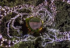 Electric Tree (orebrandonm) Tags: oak louisiana neworleans oaktree ptgui tinyplanet