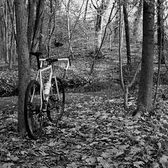 Got the itch to shoot some film, thanks @jpbevins!  #weavercycleworks #custombicycles #trix400 #film #olympus #sp35