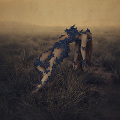 the sound of flying souls, part 3 (brookeshaden) Tags: newyorkcity butterflies create awareness videoblog fineartphotography fibromyalgia may9 imagecampaign brookeshaden caterpillarwalk