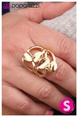 1374_ring-goldkit2march-box05