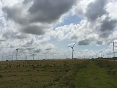 Parque Elico Geribatu (RS) (Programa de Acelerao do Crescimento (PAC)) Tags: rs riograndedosul pac obras energia aerogeradores uee santavitriadopalmar usinaelica geraodeenergia infraestruturaenergtica parqueelicogeribatu usinageribatu complexoelicocamposneutrais
