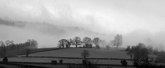 (Doodles N' Dabbles) Tags: trees mist mountain tree fog wales clouds cloudy hill silhouettes line brecon beacons