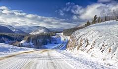 Highway 66 to Elbow Falls (John Andersen (JPAndersen images)) Tags: winter sunlight clouds kananaskis sunny le elbowfalls freshsnow 12monthsofthesameimage httpswwwflickrcomsearchtags12monthsofthesameimage