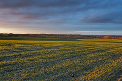 No. 0995 Low lights & Shadows (H-L-Andersen) Tags: winter sunset sky sun nature rural landscape landscapes farming farmland crofts 1740mm manfrotto 6d landoflight canoneos6d hlandersen