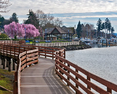Poulsbo (scott0284) Tags: marina cherry liberty 1 bay march washington spring dock nikon blossoms walkway poulsbo d300